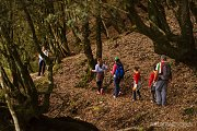 Roman Oak Forest Hike with Wild Adventures
