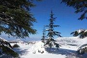 B2h to Snowshoeing Weekend