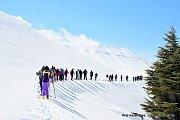 Bakish-Zaarour Snowshoeing with Wild Adventures